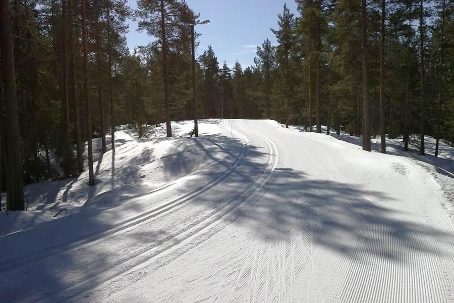 ski de fond dans les vosges  la bresse
