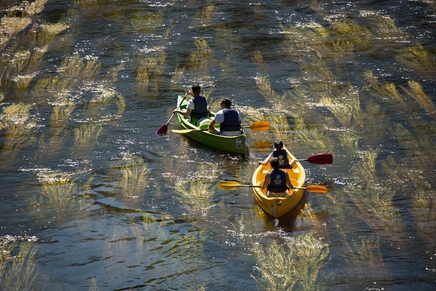 90 - riviere-dordogne_secteur-argentat©MalikaTurin-00016 (1)