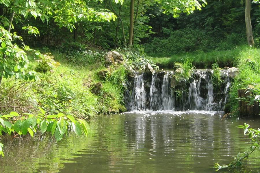 cascades kruth wildenstein