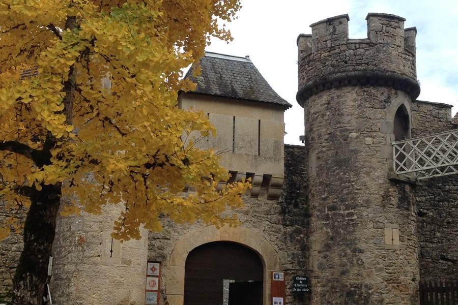 Gingobiloba devant le portail fermé