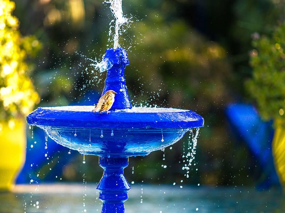 Jardin Majorelle, fontaine