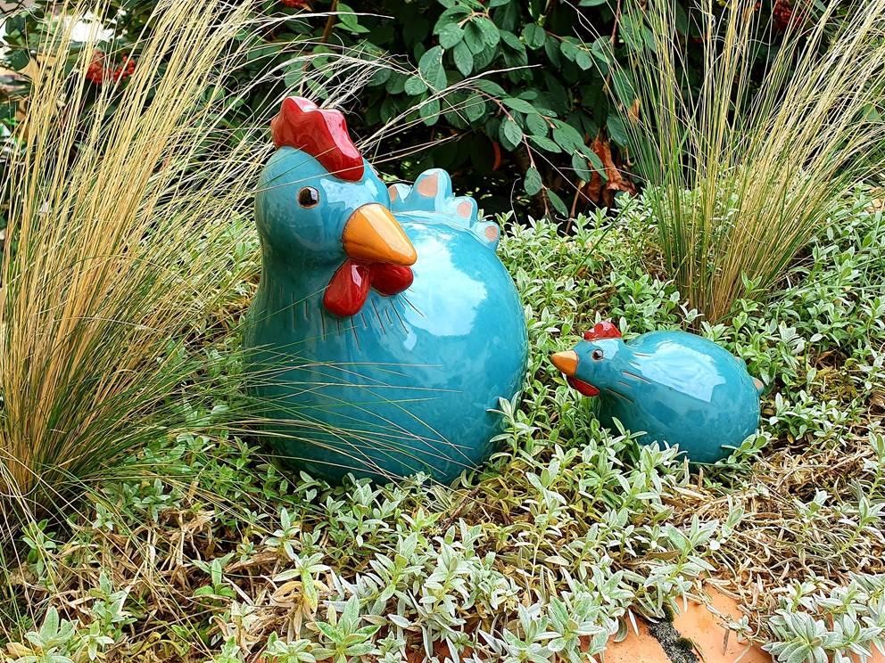 Les poulettes du gîte La Grangette