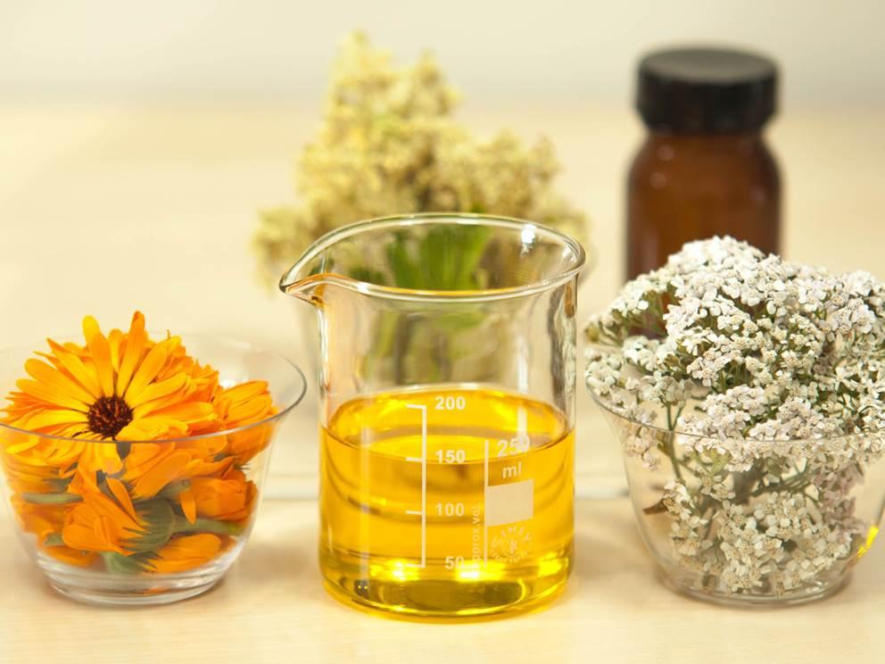 plant-flower-food-herb-produce-beaker-571137-pxhere