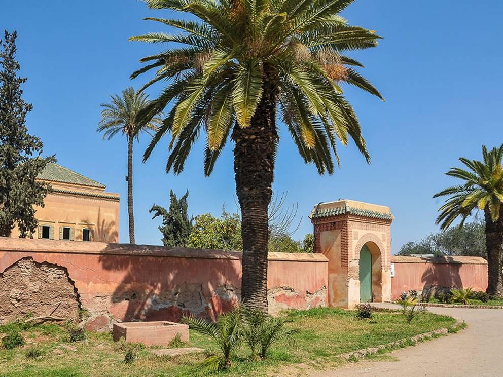 Palmiers et pavillon dans les Jardins de la Ménara