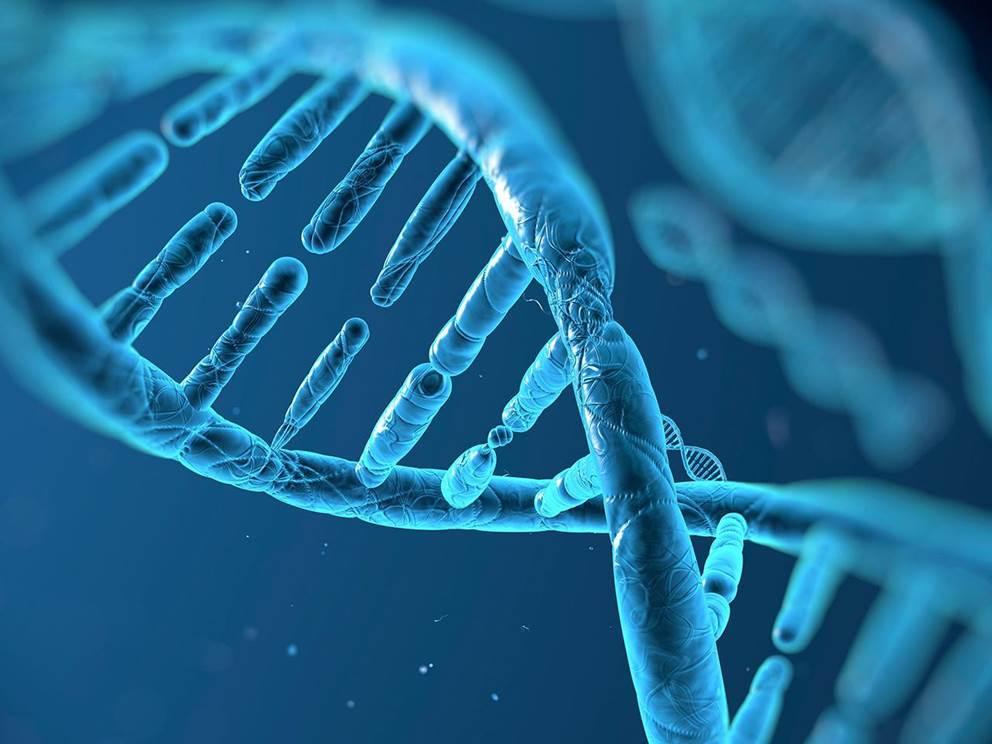Biomedical-sciences-1920x960