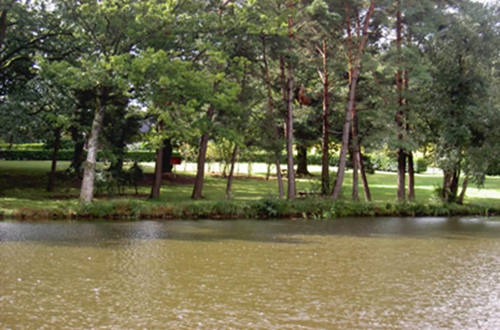 Camping L'étang aux Biches