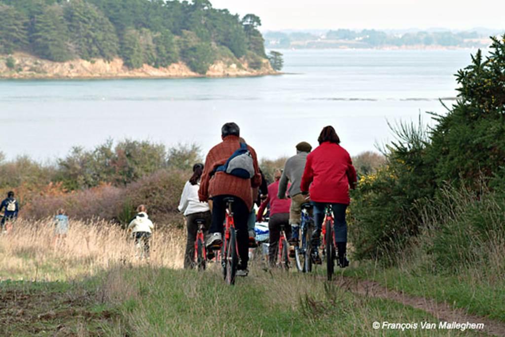 Sortie-à-vélo-arzon-morbihan-bretagne sud