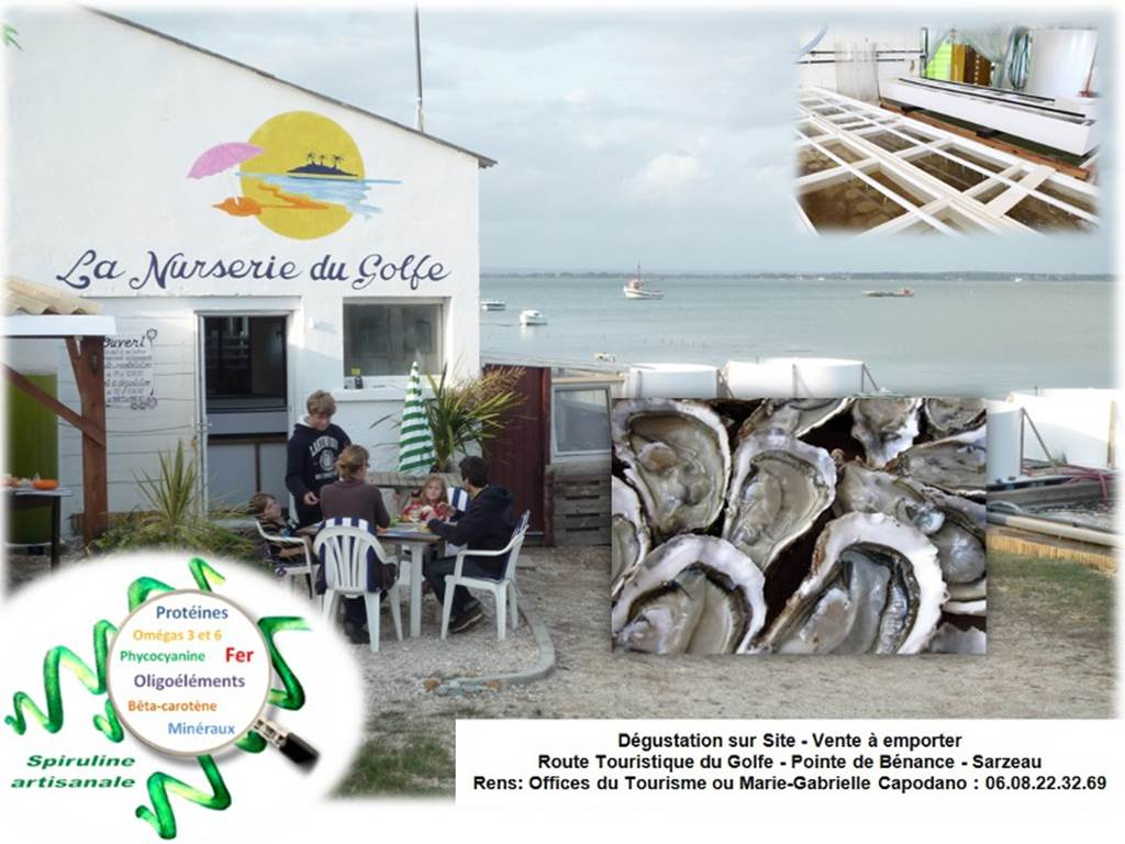 La-nurserie-du-golfe-sarzeau-morbihan-bretagne sud